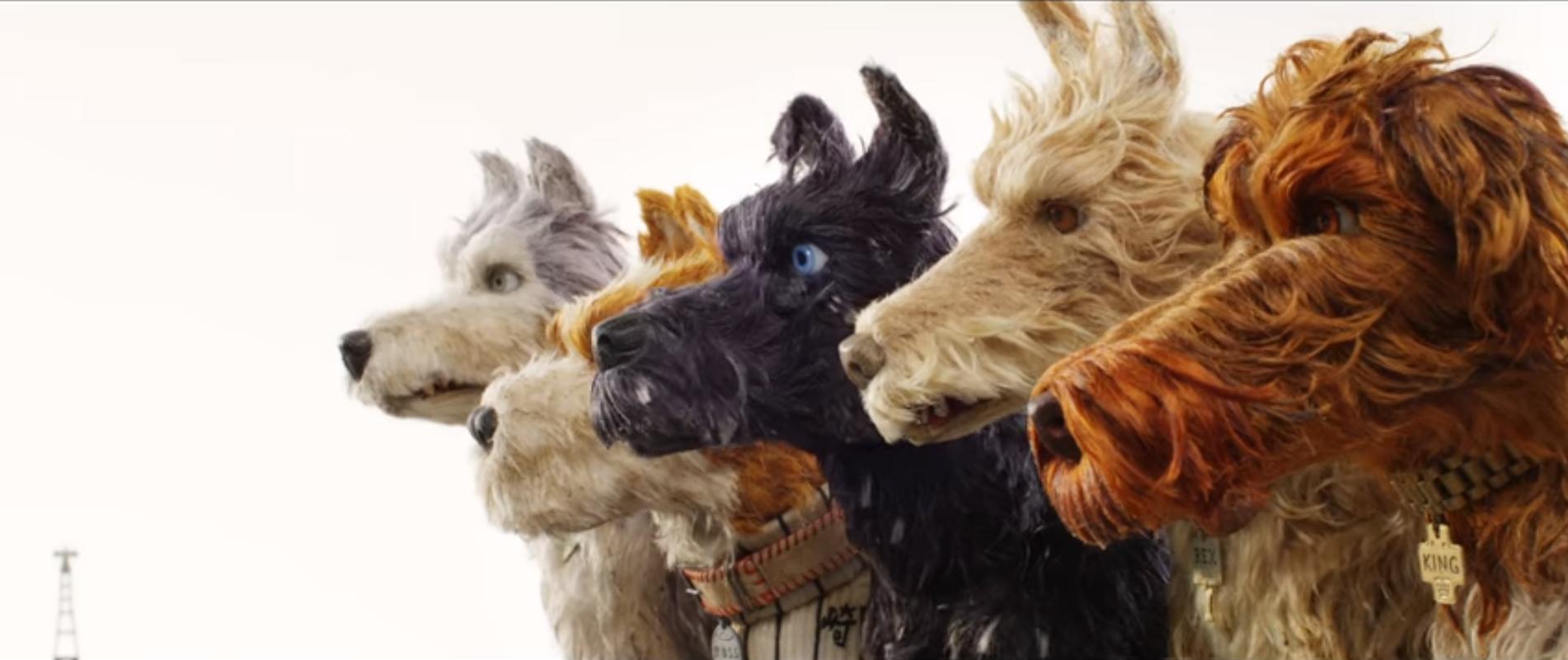 Bộ phim mừng năm Mậu Tuất của Wes Anderson tung trailer nhá hàng đầy vui nhộn - Ảnh 3.