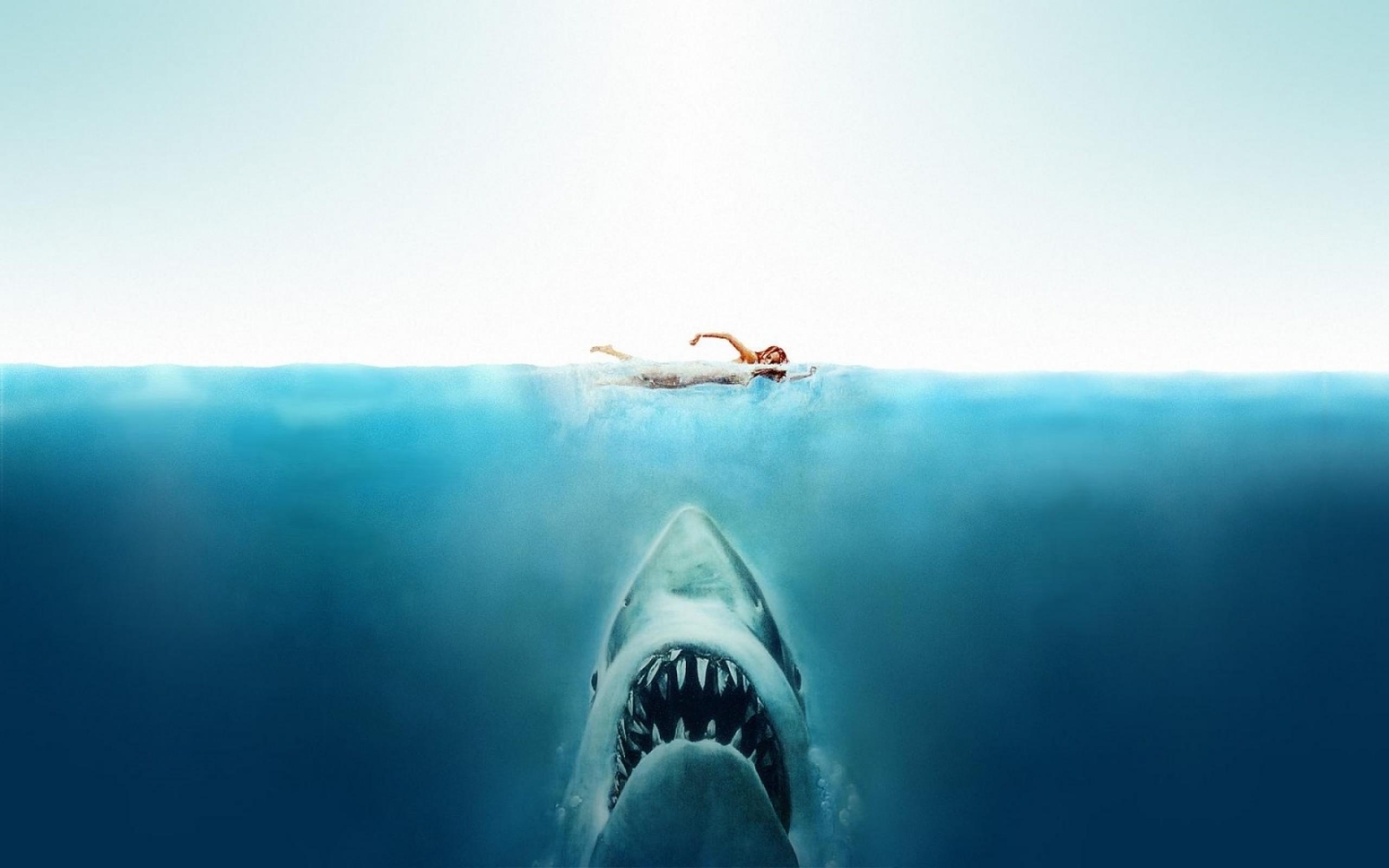 Jaws Wallpaper ·① WallpaperTag