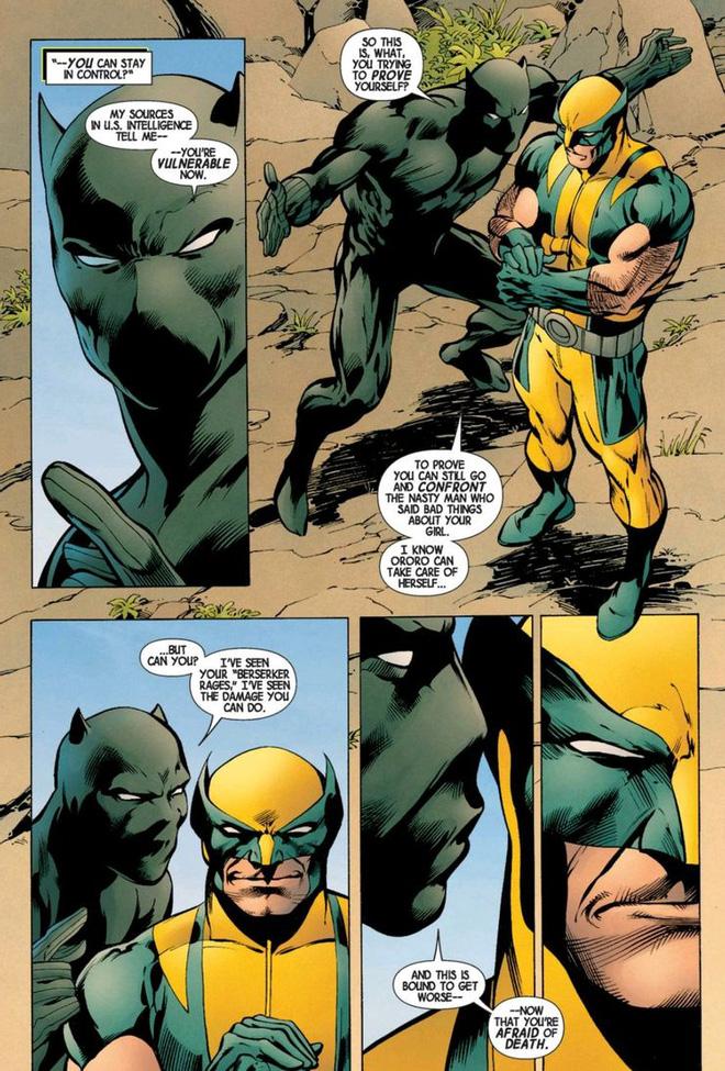 Điều gì đã khiến cho Wolverine và Black Panther ghét nhau như chó với mèo? - Ảnh 2.