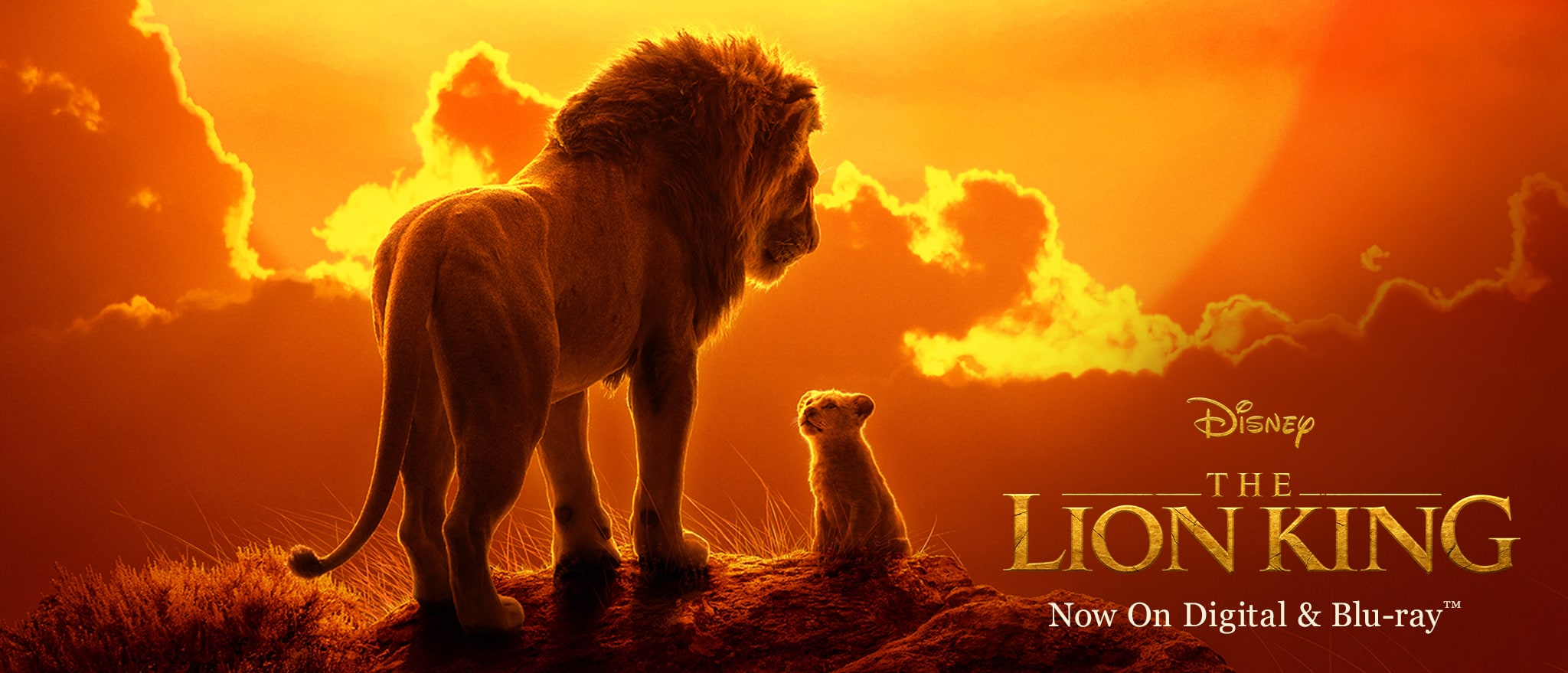 The Lion King (2019)   Disney Movies